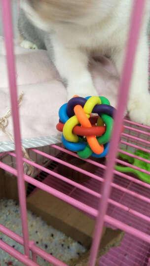 咪贝萌 宠物猫玩具 猫咪用品 套餐 七彩铃铛球 笼中皮毛老鼠 羽毛逗猫棒 会跑老鼠各一个 组合 猫咪用品组合 晒单图