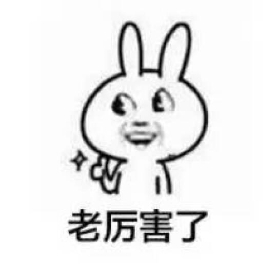 柠檬初上 【清仓特价19元】T恤女短袖夏装新款韩版女装大码上衣蕾丝显瘦女士棉体恤 N0001 灰色 XL 晒单图