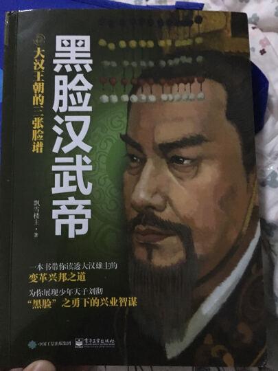 大汉王朝的三张脸谱:黑脸汉武帝 晒单图