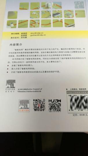 应用网络安全与智能电网 现代电力基础设施的安全控制 晒单图