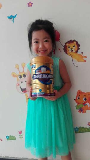 时健(si-ki) 蛋白质粉1kg 中老年高钙儿童成长钙铁锌牛初乳多维氨基酸低糖营养8款蛋白粉可选 牛初乳蛋白粉1000g 晒单图