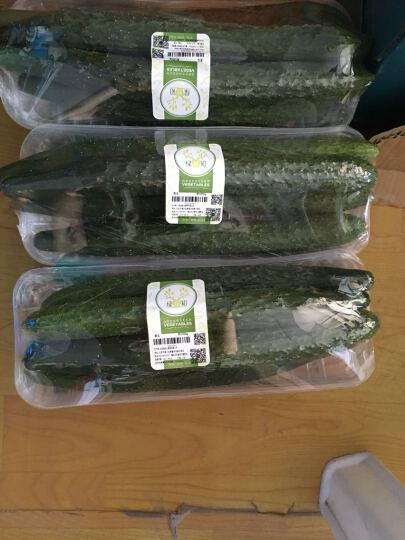 绿鲜知 航天水果黄瓜 约500g 新鲜蔬菜 晒单图