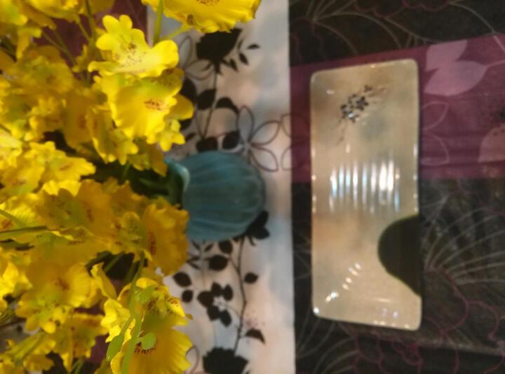 奇达 密胺仿瓷餐具秋草2格海螺碟塑料两长方形盘子方形异形碟卤菜碟KTV小吃薯条碟寿司碟 长方盘-长20*宽12*高2CM 晒单图