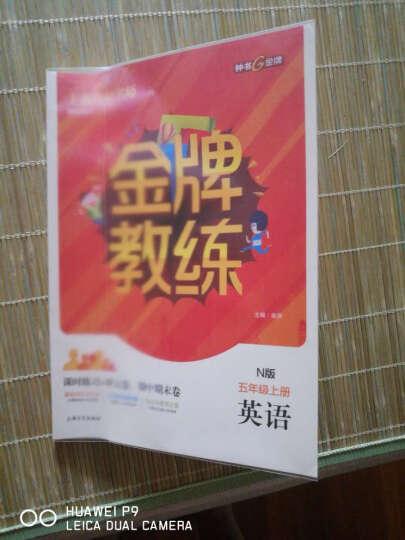 钟书金牌 金牌教练 英语N版 5/五年级上册 上海百位名师联袂编写 配套上海牛津版英语教材 晒单图