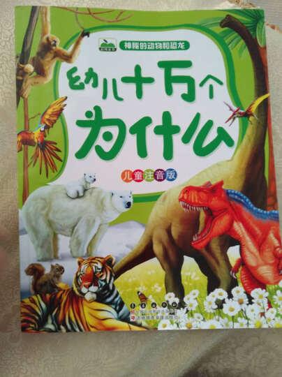 晨风童书 幼儿十万个为什么 神秘的动物和恐龙(儿童注音版) 晒单图