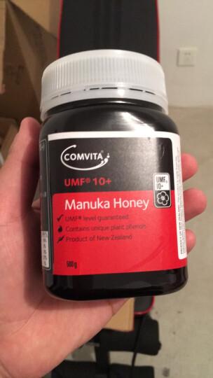 康维他(COMVITA)生姜麦卢卡混合蜂蜜250g 晒单图