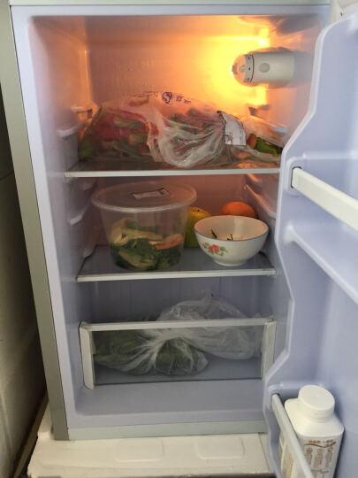 帕琪丝(PATCHES) 高965mm 双门迷你小型电冰箱 家用冷藏冰箱 BCD-66 银色 晒单图