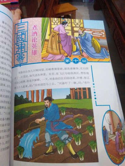 青少版四大名著:三国演义 晒单图