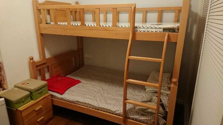 特米奈思实木床 床 榉木床 上下铺上下床 高低床 子母床 双层床 榉木实木床 儿童床 榉木色 1500*1900单床 晒单图