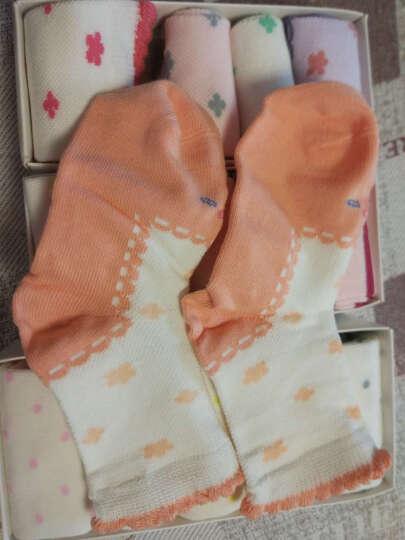 【5双装】浪莎Langsha儿童袜子棉袜女童短袜男童袜子秋冬 3daa173205  5双装 S  4-6岁 晒单图