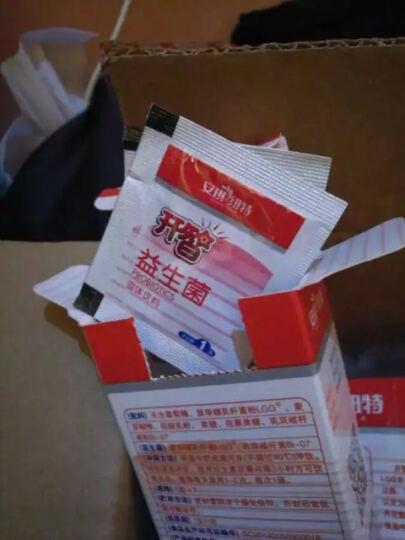 安琪纽特(ANGEL NUTRITECH) 开智益生菌固体饮料(婴幼儿适用) 7袋装 晒单图