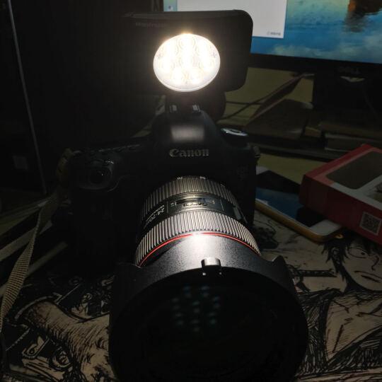 曼富图(Manfrotto)LUMIE MUSE流明8珠LED灯MLUMIEMU-BK内置锂电池补光 晒单图