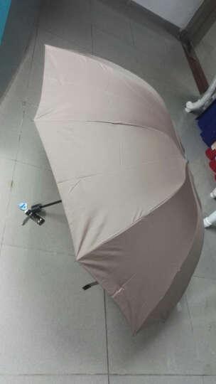 天堂伞 三人大号男士折叠晴雨伞 十骨三折商务太阳伞 可定制广告伞印字logo  33212 咖啡色 晒单图
