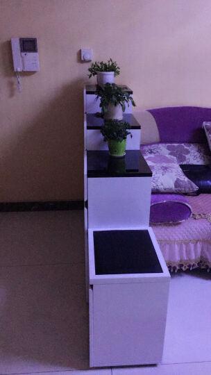 华纳斯(HUANASI) 华纳斯 鞋柜 储物玄关门厅柜 鞋架 黑白鞋柜(右高左低)+换鞋凳 晒单图