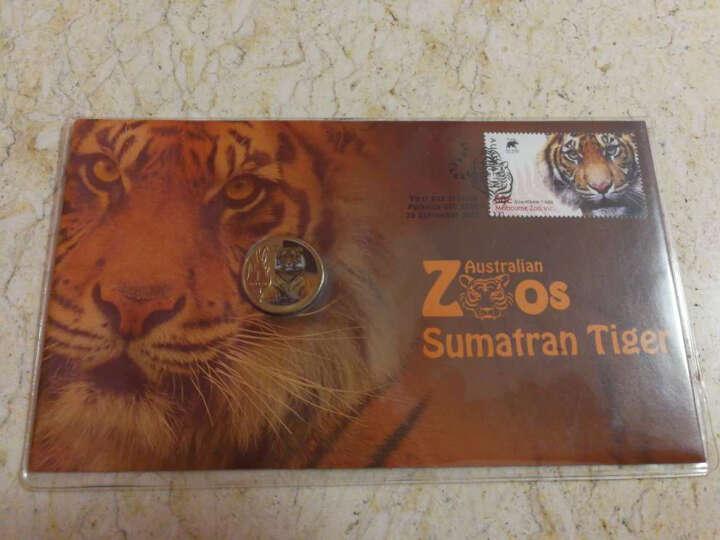 中泉钱币 六一儿童节特惠 2012澳大利亚动物园苏门答腊虎PNC 晒单图