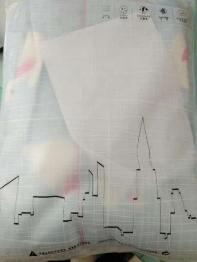 俏薇妮睡衣女春秋纯棉长袖翻领韩版可爱甜美卡通宽松可外穿长裤家居服套装 5686彩色火烈鸟 XL 晒单图