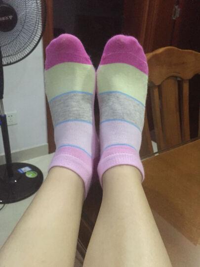 浪莎女童袜子儿童夏季网眼薄款小孩学生中童大童棉袜 夏款小白兔6双 (10岁以上)适合35-39码鞋子 晒单图