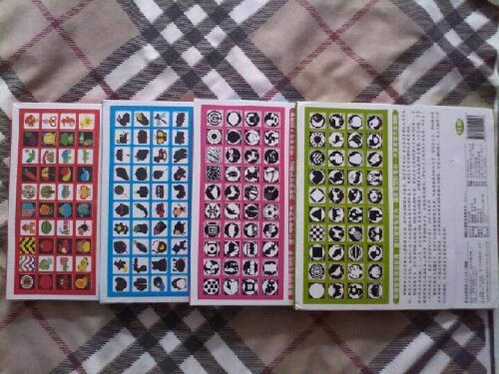 小海豚4册80张初生婴儿视觉激发卡新生儿宝宝闪卡黑白卡+彩色卡认知图片 晒单图