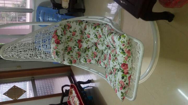 家友福 吊篮 阳台躺卧形挂椅秋千 室内户外休闲藤椅摇摇椅家具 咖啡色+绿色坐垫 晒单图
