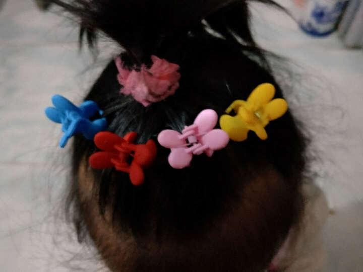 贝士 韩国儿童成人通用饰品甜美可爱宝宝小号抓夹兔子发夹对夹发卡子盘发头饰发抓刘海边夹 浅黄 晒单图