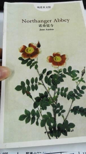 纯爱英文馆:诺桑觉寺(英文) 晒单图