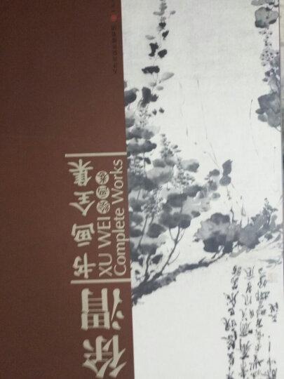 徐渭书画全集(套装共2册) 晒单图