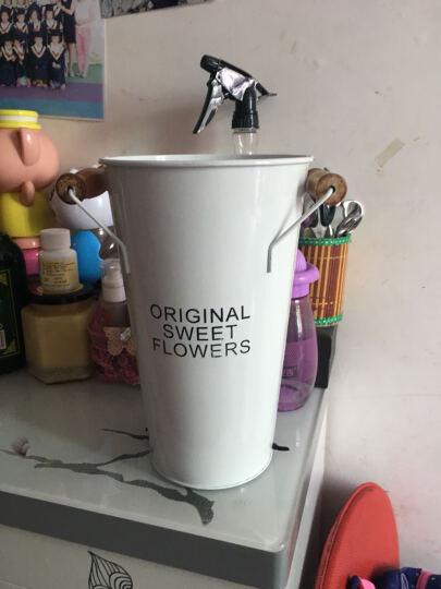 春光好 花桶花器铁皮桶花店家居铁艺花瓶装饰品干花鲜花桶插花花桶大花瓶 白色大号高40 大 晒单图