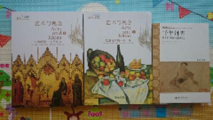千年丹青  细读中日藏唐宋元绘画珍品 9787301178577 晒单图