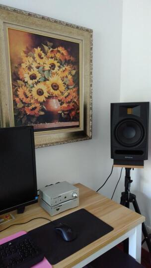 PRESONUS PreSonus R80 音箱8寸监听有源音箱 电脑HIFI音响 单只 晒单图