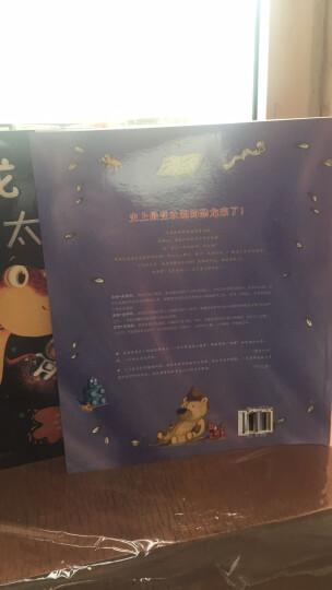 童立方·便便恐龙系列套装(套装全3册) 晒单图