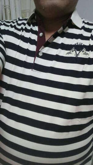 吉普盾 短袖T恤男2017春夏新款纯棉质翻领男装宽松加肥加大码条纹夏季薄款POLO衫 宝蓝色 XXXL 晒单图