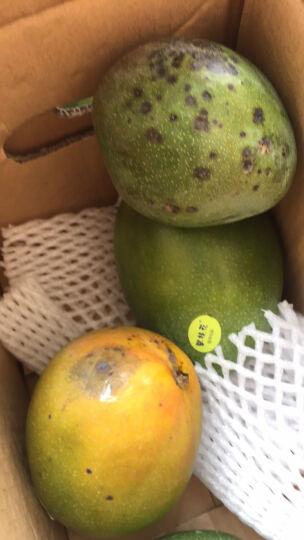 欢乐果园 海南三亚小台农芒果 1kg装 单果50-80g 新鲜水果 晒单图