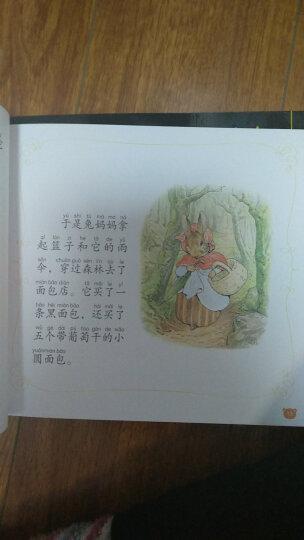 幼儿安全教育图画书(套装共4册) 晒单图