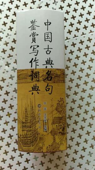 中国古典名句鉴赏写作词典 晒单图