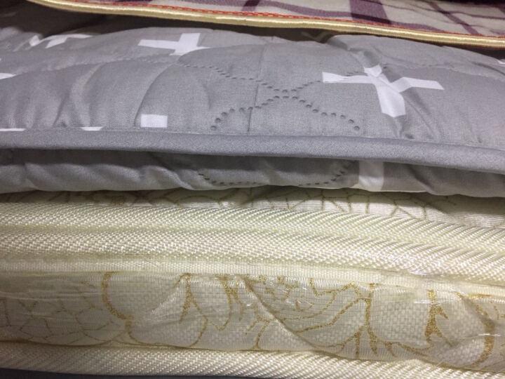 南极人 床垫子床褥子加厚学生床垫单人宿舍0.9上下铺寝室垫被1.2m1.5m1.8m可折叠垫背 灰点点厚约10cm) 1.35m床 晒单图