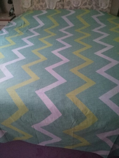 纯棉床单单件全棉被单双人1.8m床1.5米单人宿舍斜纹棉布1.2学生床ins网红小清新都市简约格子条 咖啡猫 1.8米床250cmx230cm 晒单图