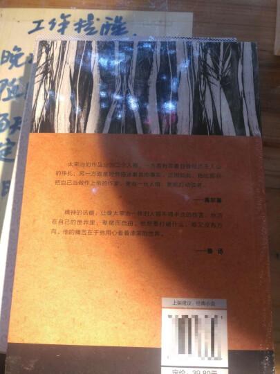 王国维:一个人的书房 晒单图
