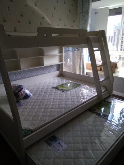 多缘佰兰 床垫 儿童床垫 5公分厚环保椰棕健康床垫 可定制. 900*1900(5公分厚) 晒单图