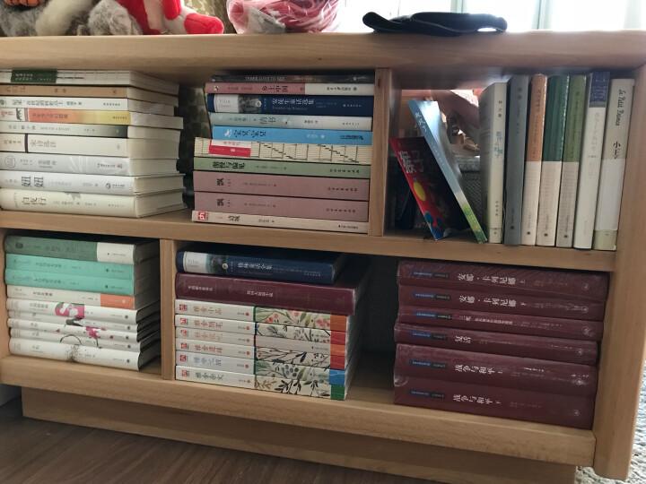 (诺贝尔文学奖)西西弗神话 加缪作品 上海译文出版社 现代世界文学名著 译文经典外国小说文 晒单图