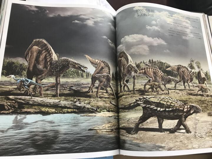 它们恐龙时代  第2版 恐龙百科 儿童漫画 儿童文学 科普百科  晒单图