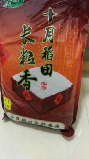 十月稻田 长粒香大米 东北大米 大米500g 晒单图