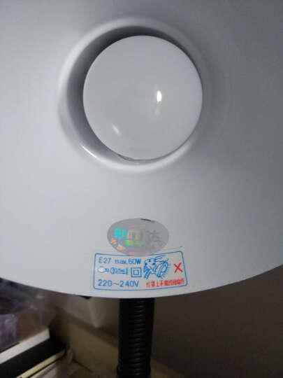 飞利浦(PHILIPS) LED灯泡 球泡 2.5W E27大螺口 6500k 白光 单支装日光色 晒单图