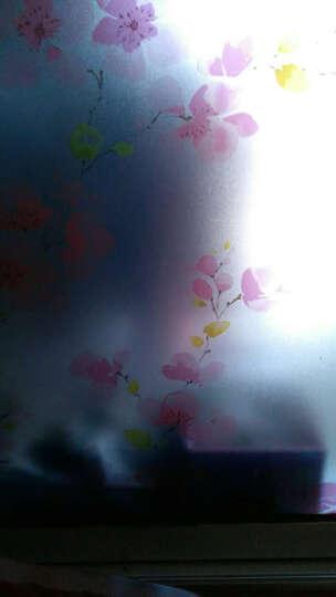 DH加厚90cm玻璃贴膜窗纸玻璃贴纸浴室窗户移门磨砂膜磨砂贴膜玻璃膜即时贴遮光贴膜 红梅-宽90cm*3米 晒单图