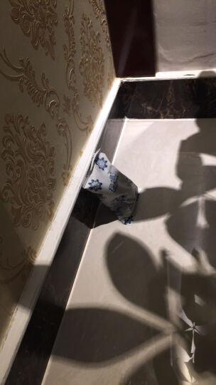 绿之源 家庭除醛大套装 活性炭除甲醛清除剂光触媒喷雾剂甲醛检测盒香樟木球除湿袋冰箱除味盒 晒单图