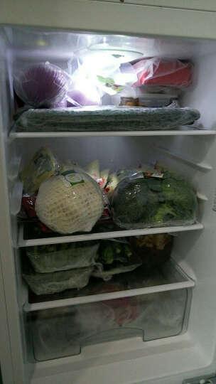 东升农场 西兰花 2-3个 约500g 新鲜蔬菜 晒单图