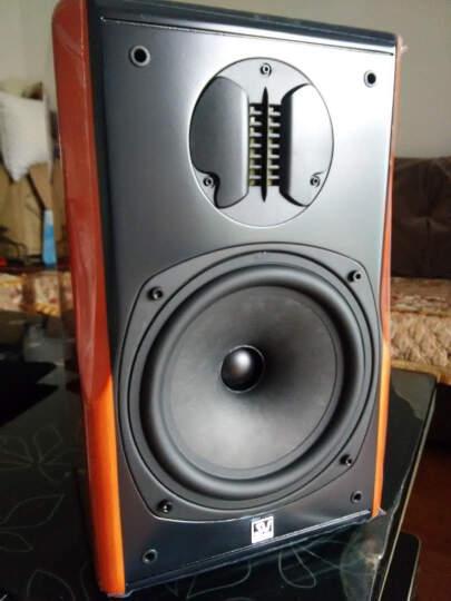 索威(SV)S880PRO 2.0声道 迷你音响 无源功放音响  HIFI发烧书架箱(原木色) 晒单图