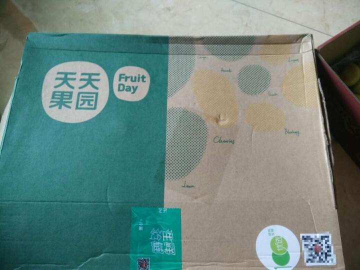 原料果 线上分拣专用 新西兰进口加力果 17.5kg装 单果重160g起 晒单图