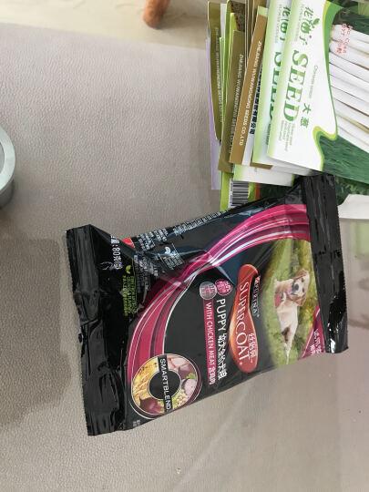 花仙子 大葱 绿色 蔬菜种子 家庭阳台/园艺休闲 80粒/袋 晒单图