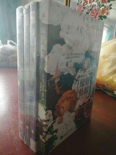 想象无限的童话故事:绿野仙踪+小王子+柳林风声+汤姆·索亚历险记(套装全4册) 晒单图