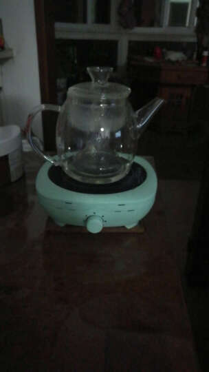 诺洁仕(LOCUS) 诺洁仕(LOCUS)电陶炉茶炉铁壶煮茶电磁炉功夫茶泡炉迷你静音 淡绿色茶炉 晒单图